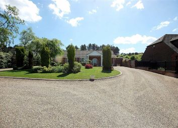 Thumbnail 4 bed detached bungalow for sale in Kirkby Road, Ravenshead, Nottingham