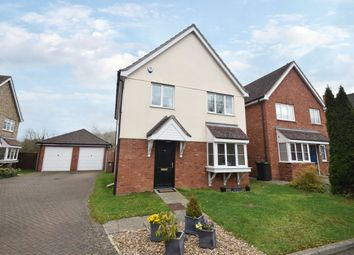 Thumbnail 4 bedroom detached house to rent in Millers Close, Hadleigh, Ipswich