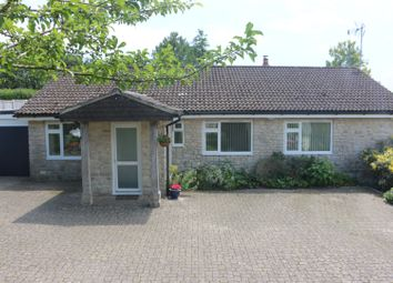 Thumbnail 3 bed detached bungalow for sale in Cheselbourne, Dorchester