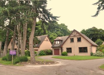 Thumbnail 4 bed detached house for sale in The Beeches, Banchory