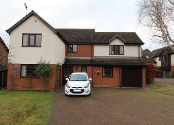 Thumbnail 4 bedroom detached house for sale in Bromley Road, Colchester