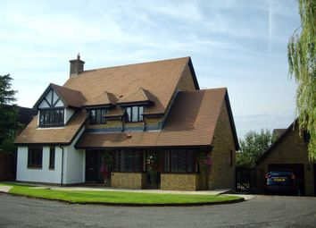 Thumbnail 4 bed detached house for sale in Badgers Meadow, Pwllmeyric, Chepstow