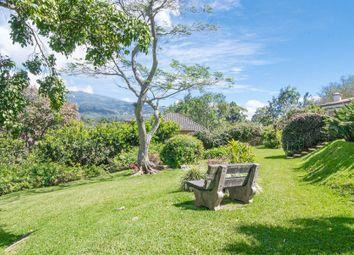 Thumbnail Land for sale in Guayabos, Curridabat, San Jose