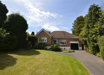 Thumbnail 3 bed detached bungalow for sale in Beacon Close, Crowborough