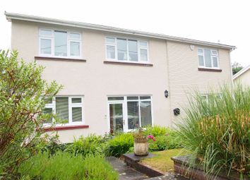 Thumbnail 4 bed detached house for sale in Church Road, Llanedi, Swansea