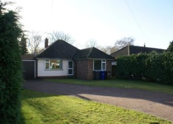 Thumbnail 3 bed bungalow to rent in Boundary Road, Bury St. Edmunds