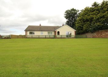 Thumbnail 3 bed bungalow to rent in East Park, Crofton, Thursby, Carlisle