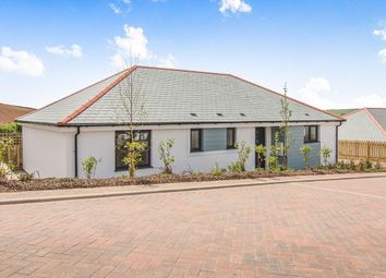 Thumbnail 3 bed bungalow for sale in St. Mewan Lane, Trewoon, St. Austell