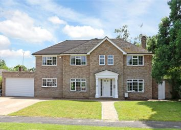 Thumbnail 5 bed detached house for sale in Shepherds Way, Liphook, Hampshire