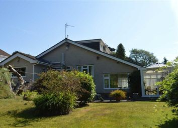 Thumbnail 4 bed detached bungalow for sale in Highview Gardens, Swansea