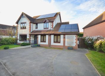 Thumbnail 6 bed detached house to rent in Bridport Way, Braintree