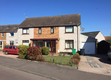 Thumbnail 2 bedroom semi-detached house to rent in 6 Scooniehill Road, St Andrews, 8Ha