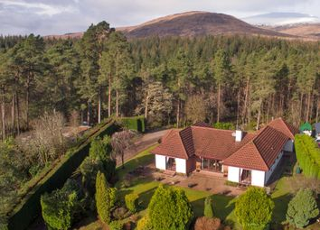 Thumbnail 4 bed bungalow for sale in Torlundy, Fort William