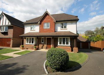 Thumbnail 5 bed detached house to rent in Hurst Road, East Molesey, Surrey