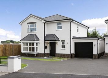 Thumbnail 4 bed detached house to rent in Horseshoe Lane East, Guildford