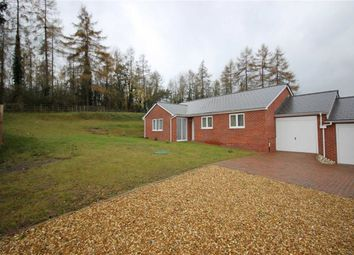 Thumbnail 2 bed bungalow for sale in Old Court Bank, Nr Ross On Wye, Herefordshire