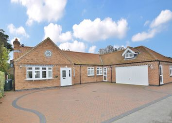 Thumbnail 4 bed detached bungalow for sale in Fox Cottage, West Bridgford