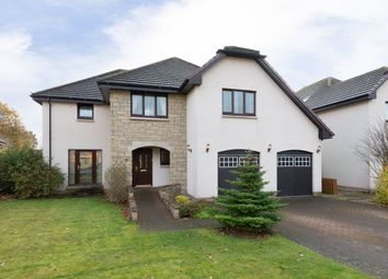 Thumbnail 4 bed detached house to rent in Castlewood Avenue, Dundee