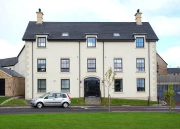 Thumbnail 2 bed flat to rent in Lady Wallace Crescent, Lisburn