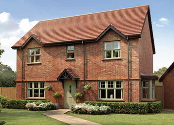 "Thumbnail 4 bed property for sale in ""The Walberswick"" at Tangier Lane, Bishops Waltham, Southampton"