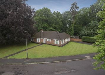 Thumbnail 3 bed bungalow for sale in Knights Templar Way, High Wycombe
