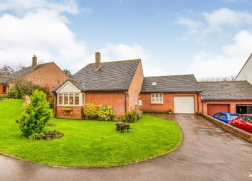 Thumbnail 2 bed bungalow for sale in Fippenny Hollow, Okeford Fitzpaine, Blandford Forum