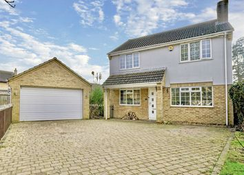 Thumbnail 4 bed detached house for sale in Cedar Close, Grafham, Huntingdon