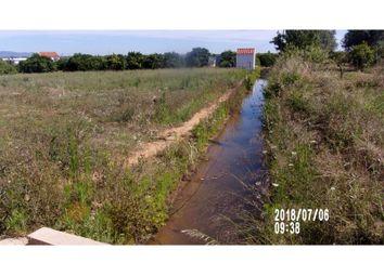 Thumbnail Land for sale in Porches, Lagoa (Algarve), Faro