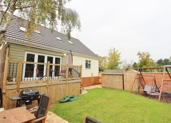 Thumbnail 4 bedroom property to rent in Heath Road, Lowestoft