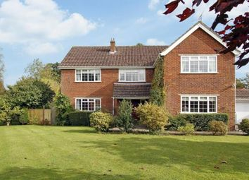 Thumbnail 4 bedroom detached house for sale in Fieldgate Close, Monks Gate, Horsham, West Sussex