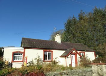 Thumbnail 3 bed cottage for sale in Neuaddwen, Bettws Bledrws, Lampeter, Ceredigion