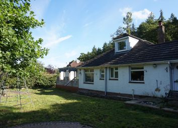 Thumbnail 3 bed detached bungalow for sale in Telegraph Road, West End