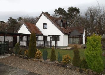Thumbnail 4 bed bungalow for sale in The Avenue, Swarland, Morpeth