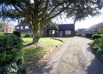 Thumbnail 3 bed bungalow to rent in Cole Lane, Ockbrook, Derby