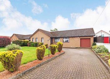 Thumbnail 3 bedroom bungalow for sale in New Trows Road, Lesmahagow, Lanark, South Lanarkshire