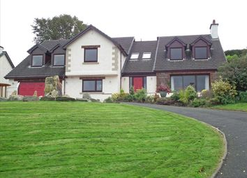 Thumbnail 4 bed detached house for sale in Lossan, The Downs, Union Mills