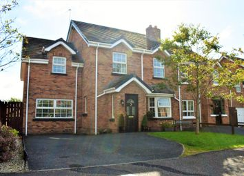 Thumbnail 5 bed semi-detached house for sale in Lyngrove Hill, Glenavy
