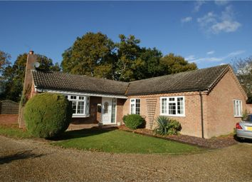 Thumbnail 3 bed detached bungalow for sale in Churchwood, Holton, Halesworth