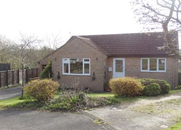 Thumbnail 2 bed detached bungalow for sale in High View Close, Tisbury, Salisbury