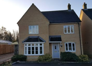 Thumbnail 4 bed detached house to rent in St. Neots Road, Hardwick, Cambridge