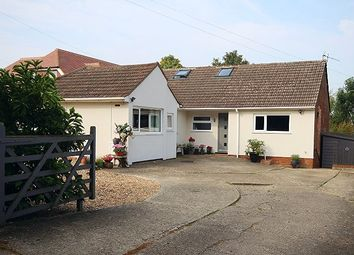 Thumbnail 4 bedroom detached bungalow for sale in The Downs, Canterbury