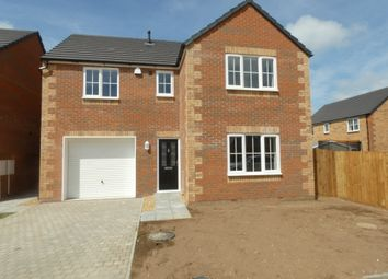 Thumbnail 4 bedroom detached house to rent in Hollow Road, Ramsey Forty Foot