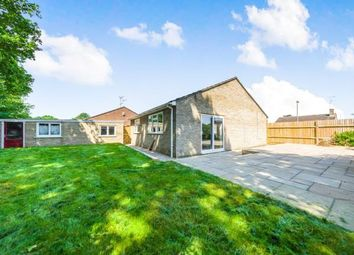 Thumbnail 2 bed bungalow for sale in Blackwater, Hampshire