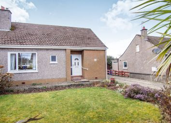 Thumbnail 4 bed semi-detached house for sale in Nevay Terrace, Dundee