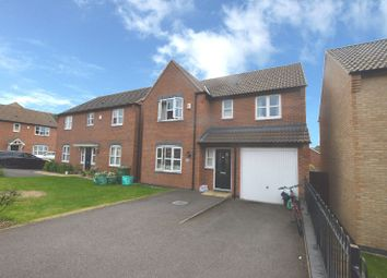 Thumbnail 4 bedroom detached house to rent in Pipistrelle Way, Oadby, Leicester