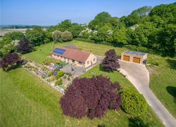 Thumbnail 4 bed detached bungalow for sale in Melbury Road, Yetminster, Sherborne, Dorset