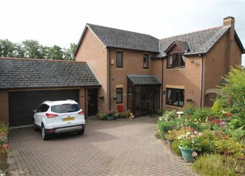 Thumbnail 5 bed detached house for sale in Bramble Close, Primrose Meadow, Newtown