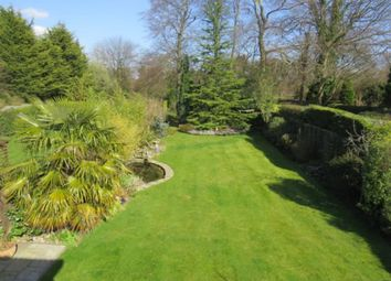 Thumbnail 4 bed detached bungalow for sale in Court Road, Orpington