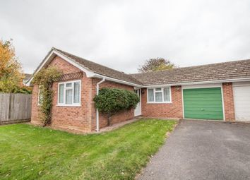 Thumbnail 2 bed bungalow for sale in Pelham Close, Old Basing, Basingstoke