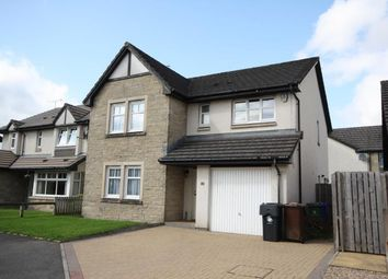 Thumbnail 5 bedroom detached house to rent in River Wynd, Stirling